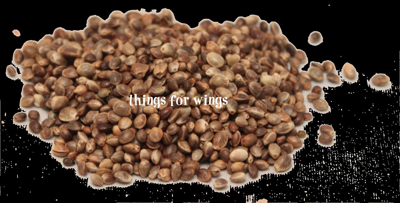 Organic whole hemp seeds