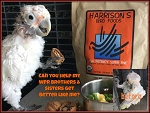 DONATE to the World Parrot Refuge Rescue!!!