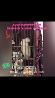 Sampson Sponsorship