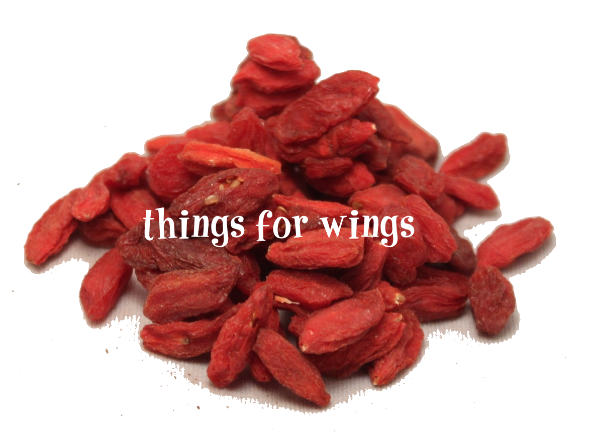 Organic Goji Berries Things For Wings Canada S Online Bird Super