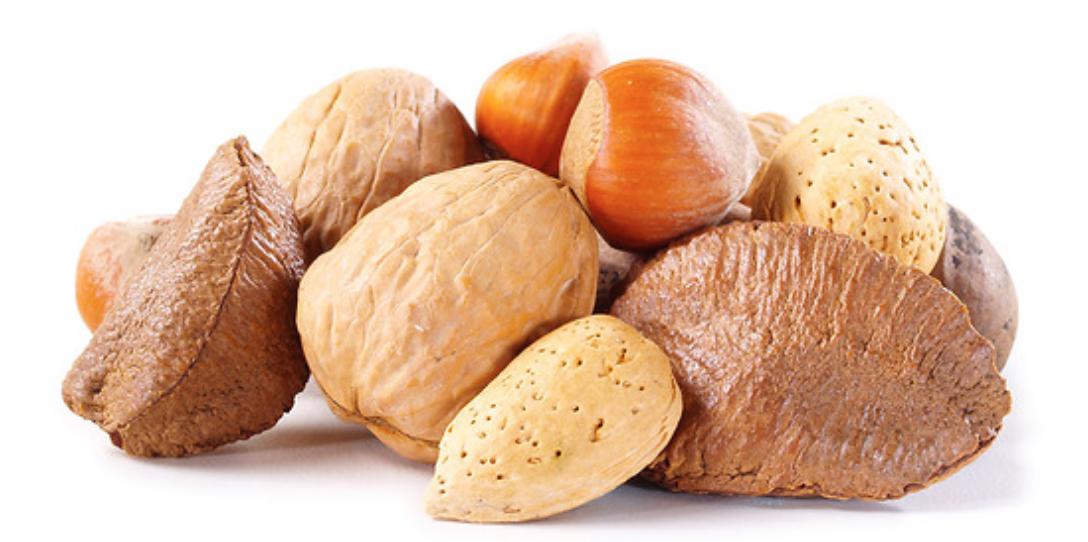 Mixed Nuts In Shell Walnuts Almonds Brazil Nuts