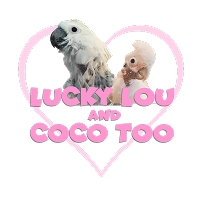 The Lucky Lou Coco Too Rescue Fund