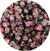 Freeze Dried Organic Blueberries