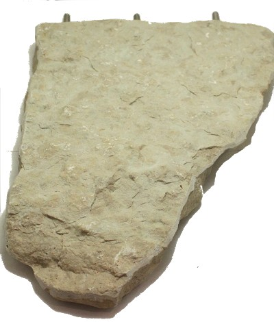"Flagstone Perch 11"" Extra Large Birds"